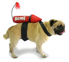 Rocketdog